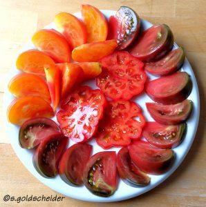 Vielfalt der Tomatensorten