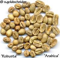 Kaffeebohnen Robusta und Arabica