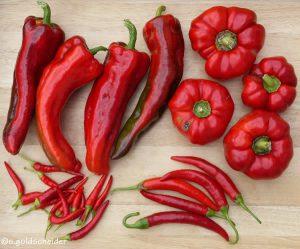 Paprika und Chili - Sortenvielfalt